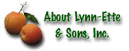 About Lynn-Ette & Sons